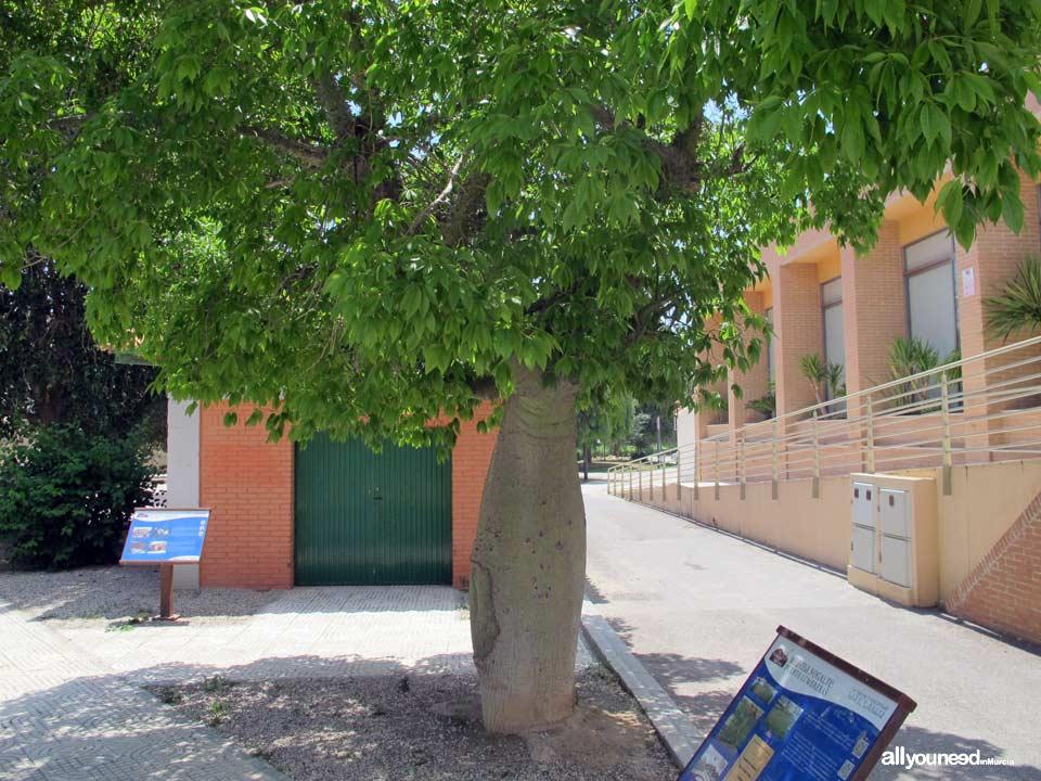 Jardin de San Rafael