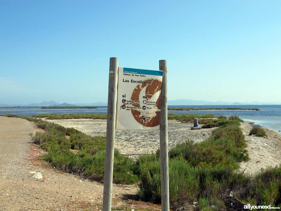 Las Encañizadas. Regional Park of the Salt Flats and Sand Areas of San Pedro del Pinatar