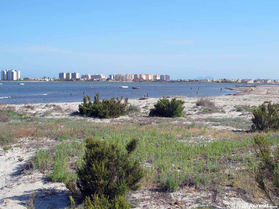 Playa de Punta de Algas