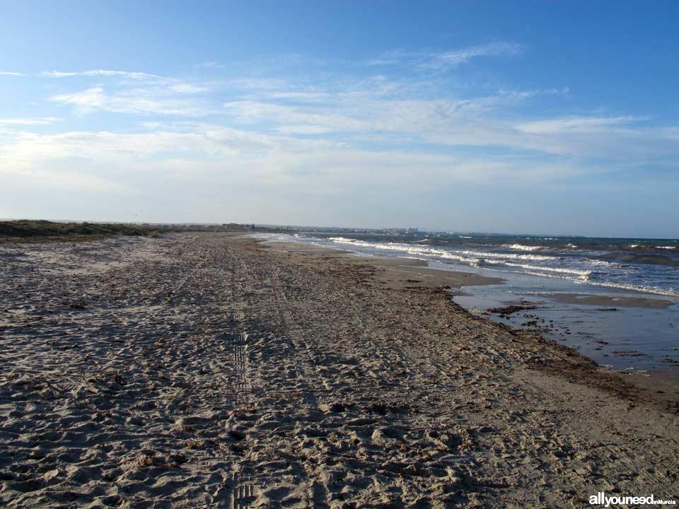 Playa de la Torre Derribada en San Pedro del Pinatar