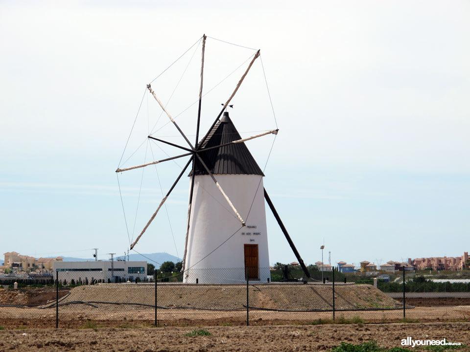 Torre Pacheco. Molino de los Pereas