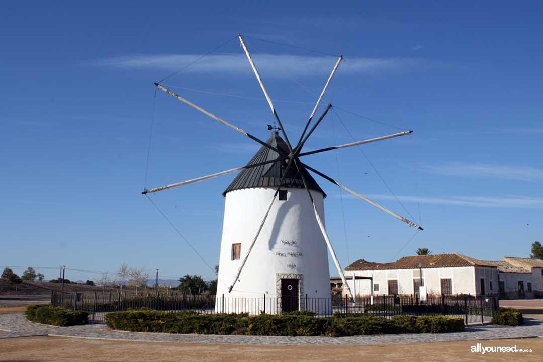 Molino El Pasico en Torre Pacheco