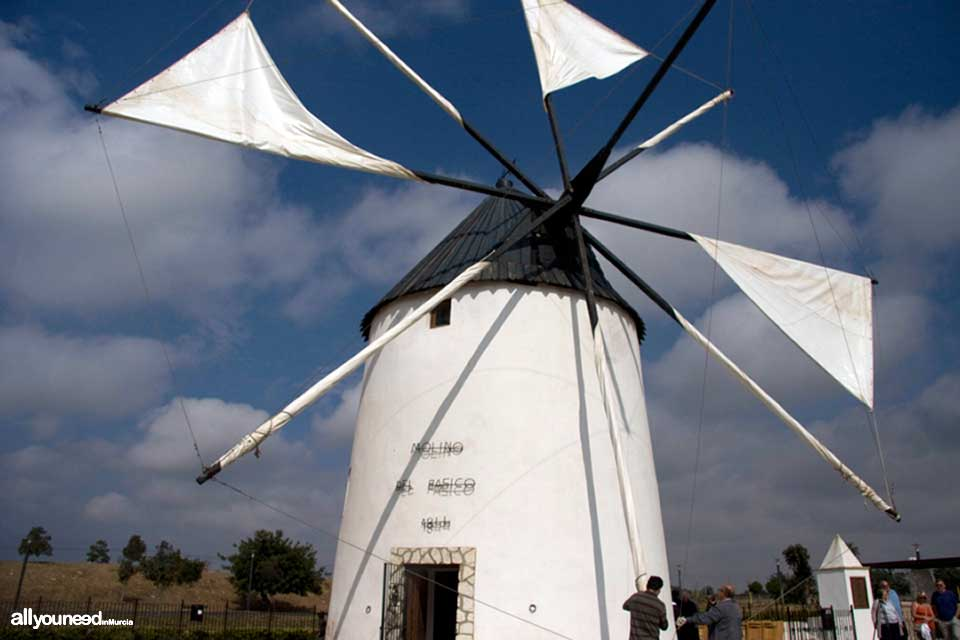 Windmills in Torre Pacheco
