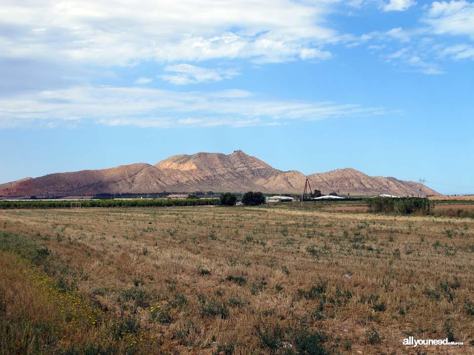 Hike to Cabezo Gordo, Torre Pacheco