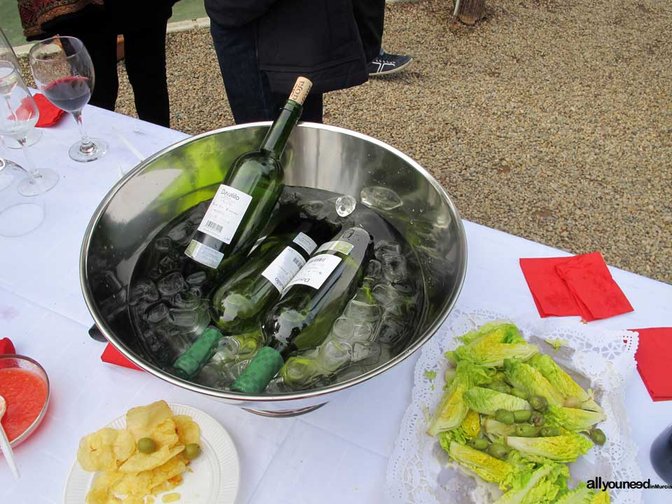 Degustación de Vinos allyouneedinMurcia