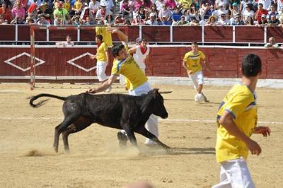 Fútbol Vaca