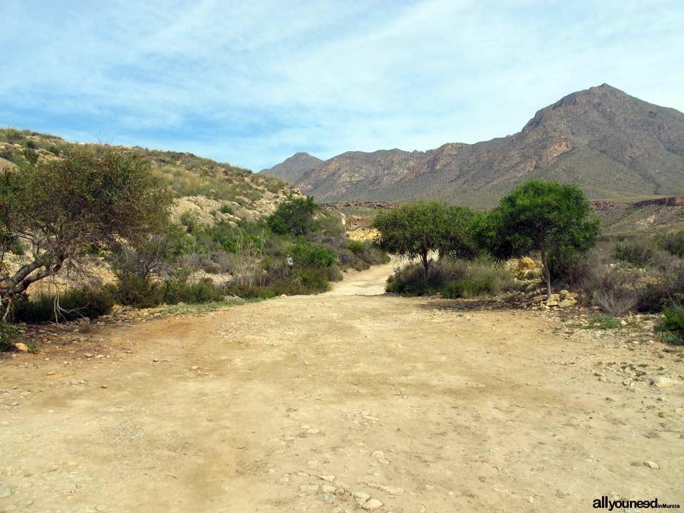 Sierra de las Moreras en Mazarrón